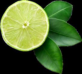 Esprit Traiteur - Citron
